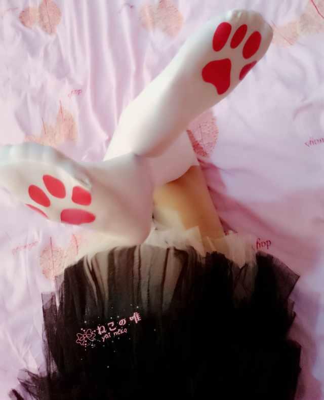 【领域少女】白丝学生脱内照片2020-01-02