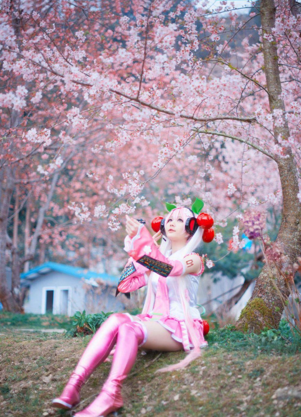 【Cosplay】动漫cosplay女装2019-01-06-小柚妹站